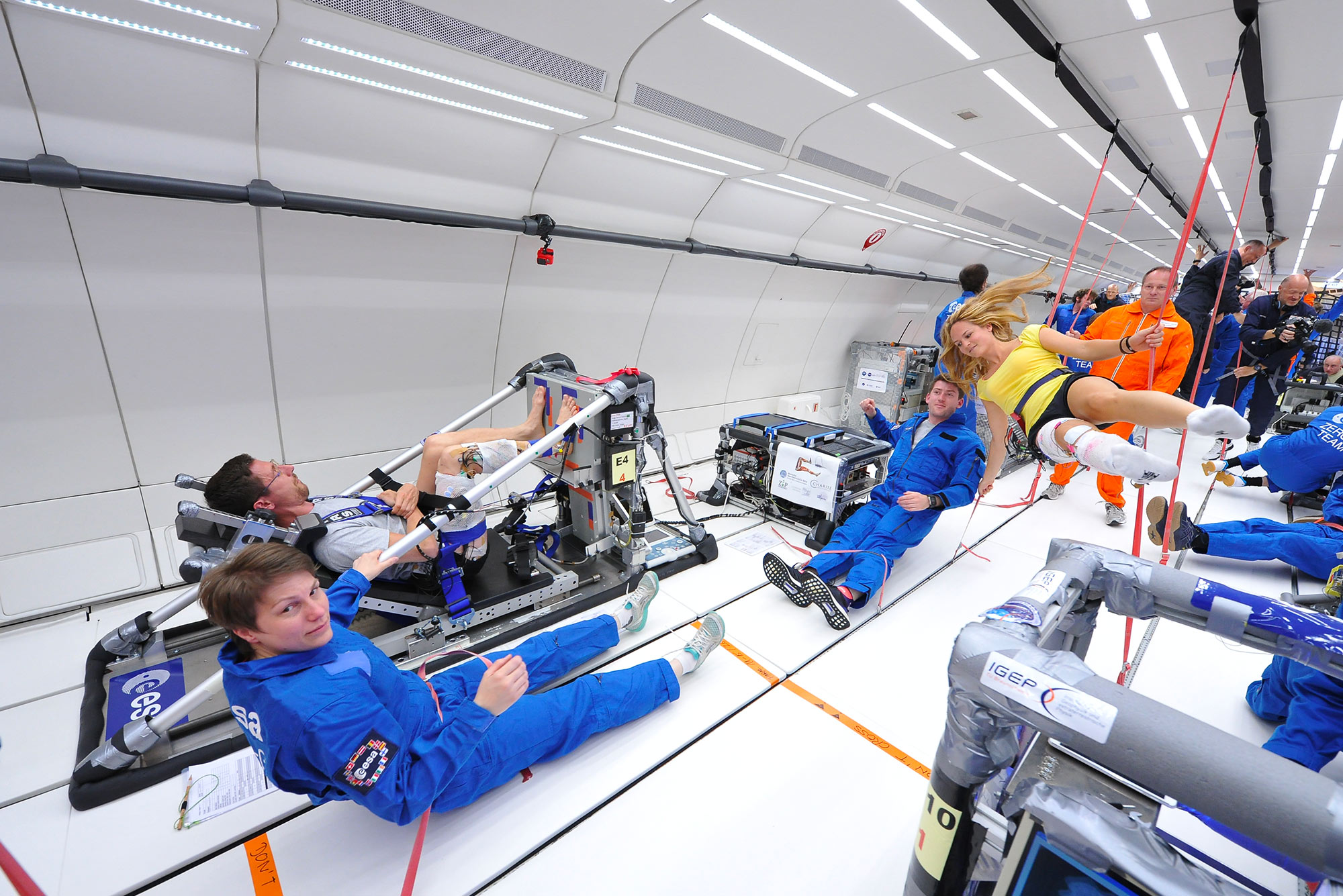 Study of muscular strength in microgravity